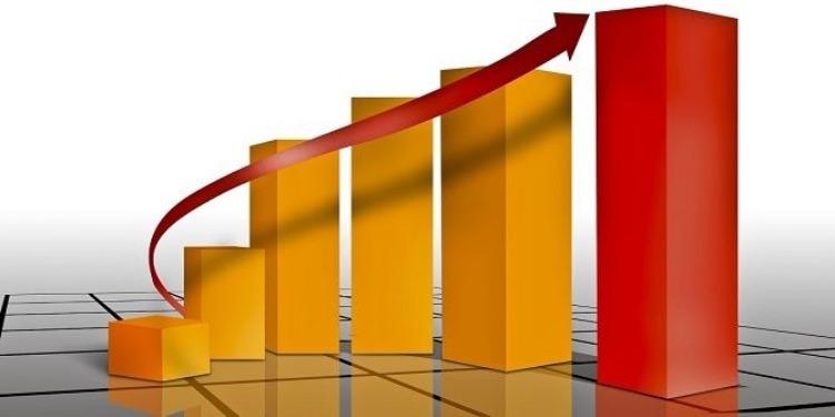 تطور الإستثمارات الخارجية بنسبة 11 بالمائة موفى شهر نوفمبر 2017
