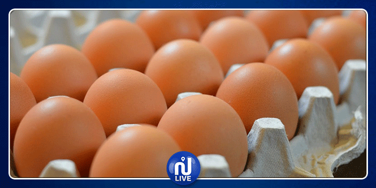 سمير الطيب: سيتم تجاوز أزمة النقص في البيض دون الترفيع في الأسعار