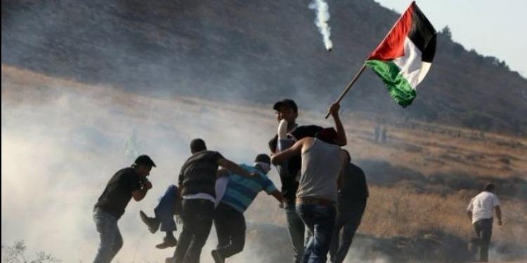 290 جريحا فلسطينيا حصيلة الاشتباكات مع قوات الإحتلال الإسرائيلي
