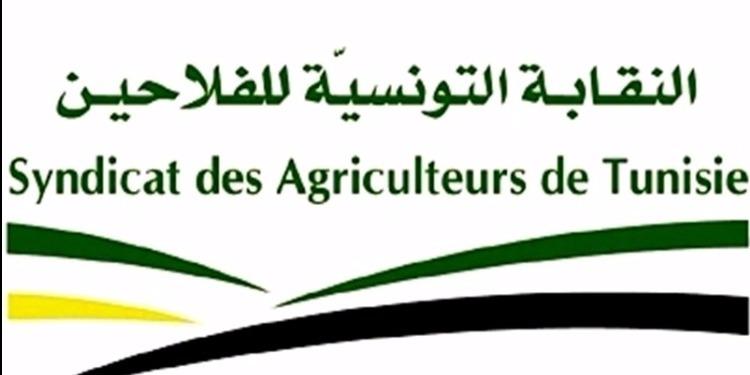 النقابة التونسية للفلاحين : ' الأمن الغذائي اليوم في خطر '