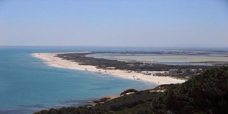 Bizerte: Une campagne de lutte contre les implantations anarchiques sur la plage de Sidi Ali El Mekki