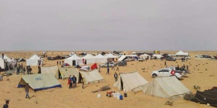 المكي: تقرير لجنة الأمن والدفاع حول تطاوين واعتصام الكامور سيكون جاهزا الإثنين المقبل