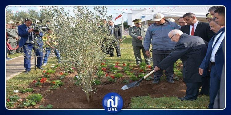 BCE participe à la célébration de la fête nationale de l'arbre