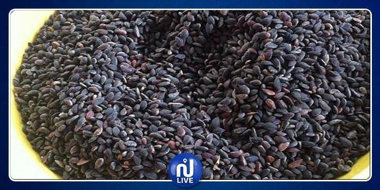 نابل: حجز 1.5 طنا من مادة ''الزقوقو''