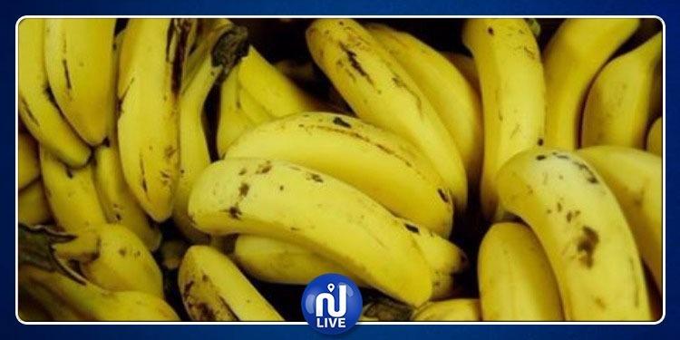 الكاف: حجز كمية كبيرة من الموز ينوي صاحبها تهريبها للجزائر