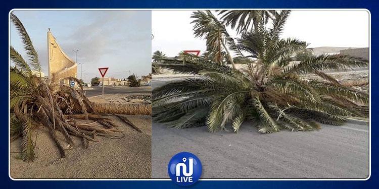 قبلي: أضرار متعددة جراء هبوب رياح رملية قوية