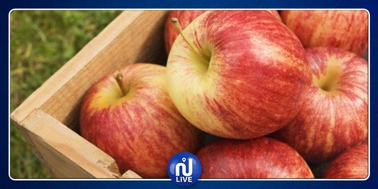 المحمدية: مداهمة مستودع وحجز 120 طنا من التفاح المُعد للتهريب