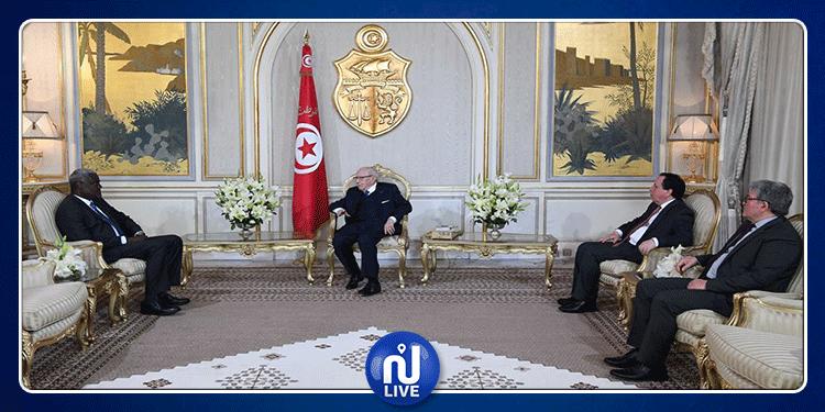 رئيس الجمهورية: ''تونس ستكون صوت إفريقيا المدافع عن شعوبها''