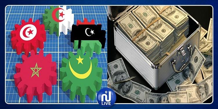 نصيب الفرد داخل المغرب العربي قد يصل إلى 4 ألاف دولار في صورة...