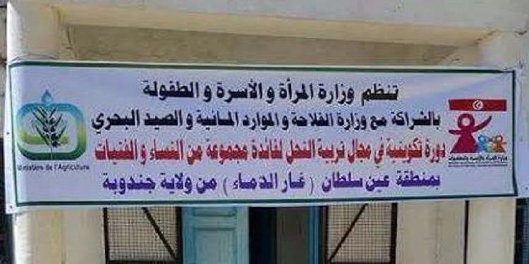 جندوبة: ورشة تكوينية في مجال تربية النحل لفائدة مجموعة من النساء بمنطقة عين سلطان