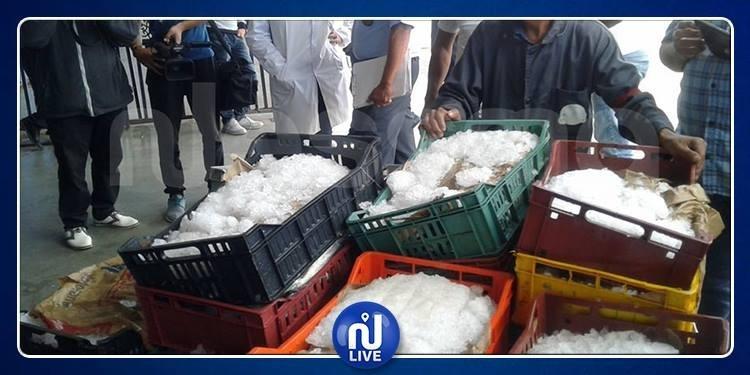 فاسدة وموجهة للاستهلاك: حجز12 طن بطاطا و960 كلغ جراد البحر