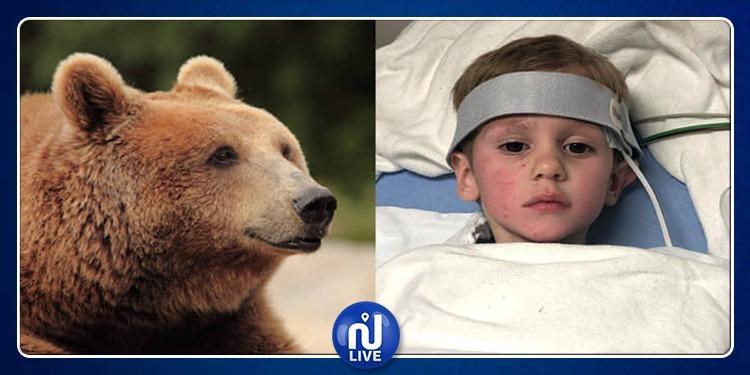 بعد أن تاه في البرية.. دب ينقذ حياة طفل أمريكي!