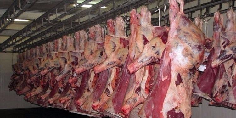 سوسة: حجز 5 أطنان من لحوم الأبقار الفاسدة