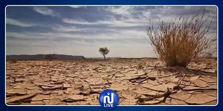 مشاركة تونس في قمة المناخ كانت 'دون المأمول''