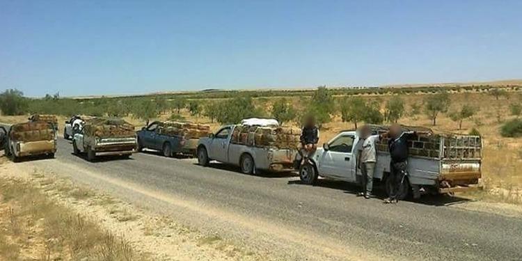 Douane: Saisie d'huile d'olive de contrebande, en provenance d'Algérie