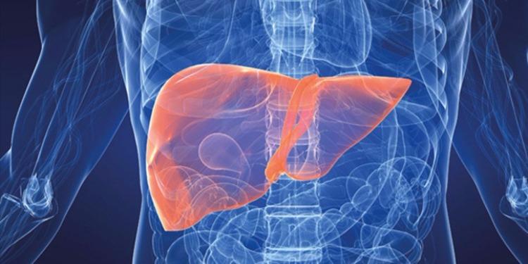 القصرين: تسجيل 370 حالة إصابة بالتهاب الكبد الفيروسي صنف ''أ''