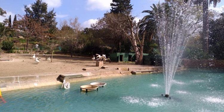 شيخ مدينة تونس يكشف : لا نية لتقسيم حديقة البلفيدير وتهيئتها خلال 5 سنوات...و إصلاح سقف جامع الزيتونة سيكلفنا مليار ومائتي ألف دينار