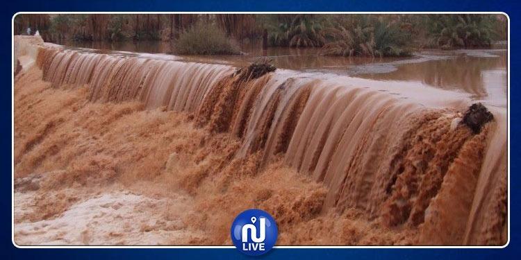 توزر: انتهاء أشغال جبر أضرار الفيضانات في واحة تمغزة قريبا