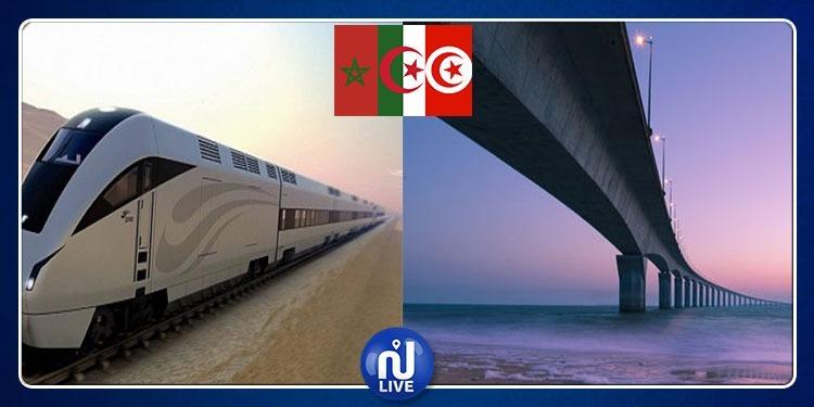 ربط إفريقيا بأوروبا وإعادة القطار المغاربي...تأكيدات حول المشاريع