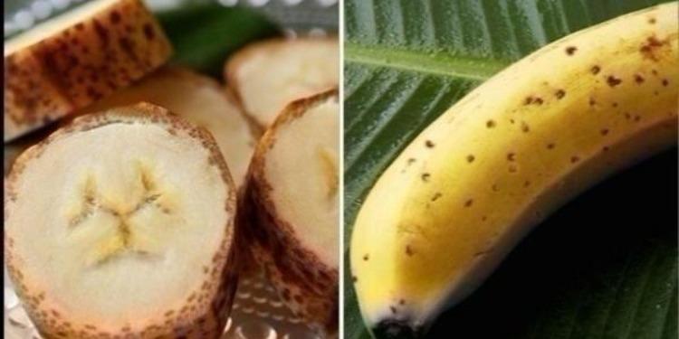 تطوير نوع جديد من الموز بقشور قابلة للأكل !