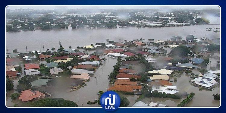 أستراليا: نفوق 300 ألف رأس من الأبقار جراء السيول