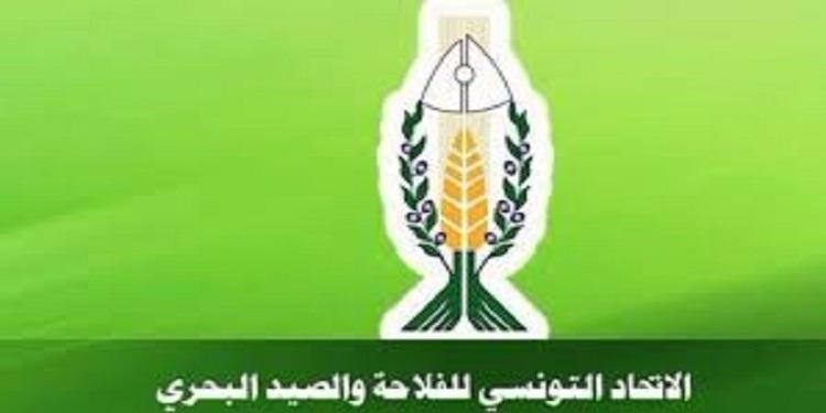 الاتحاد التونسي للفلاحة والصيد البحري يعلن دعمه الكامل لمبادرة الحكومة في محاربة الفساد