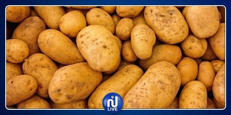 المنستير: حجز 5 أطنان من البطاطا في شاحنة متجهة نحو قابس