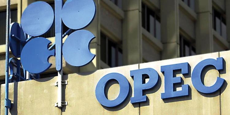 """"""" أوبك """": أسعار النفط لن تنخفض"""