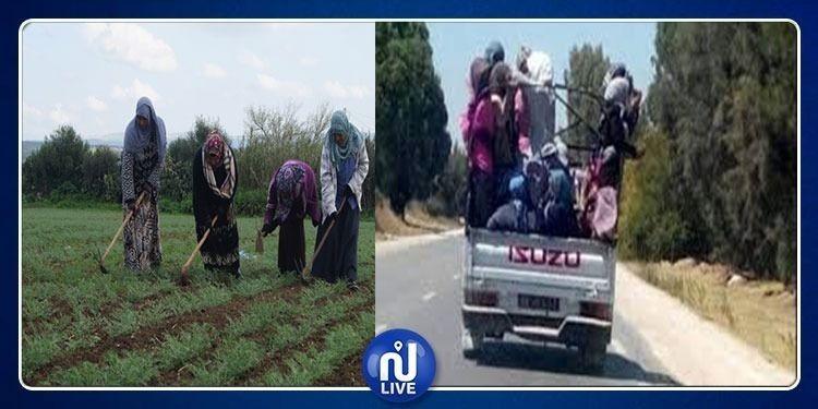جمعية النساء الديمقراطيات تطالب بتحسين ظروف عمل النساء بالأرياف