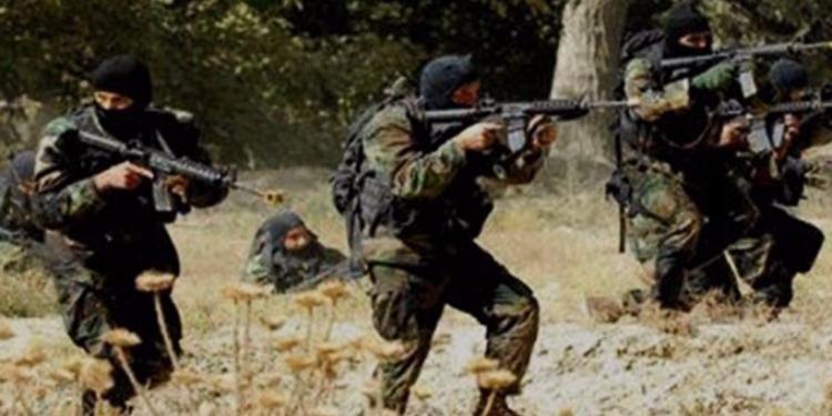 الطلق الناري المكثف بالكاف : وزارة الدفاع توضح