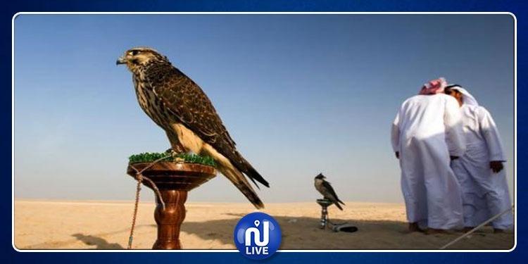 خليجيون يستنزفون الثروة الحيوانية بالجنوب التونسي بطرق غير قانونية!