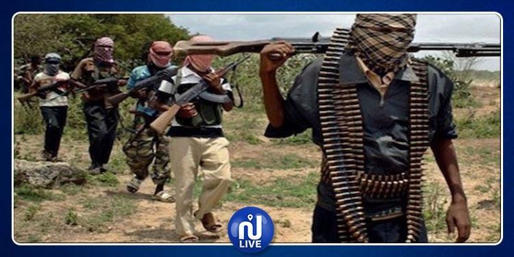 النيجر: مسلحون يختطفون 15 طفلا شرق البلاد