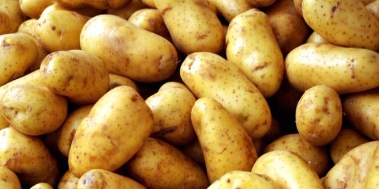 Jendouba : Saisie de plus de 150 tonnes d'oignons et de quatre tonnes de pommes de terre