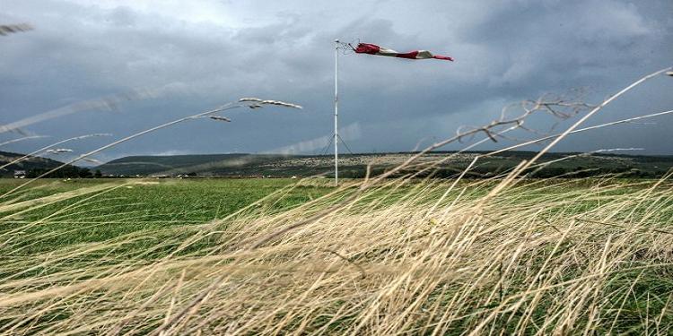 Les agriculteurs ayant subi des dégâts causés par des vents forts seront dédommagés