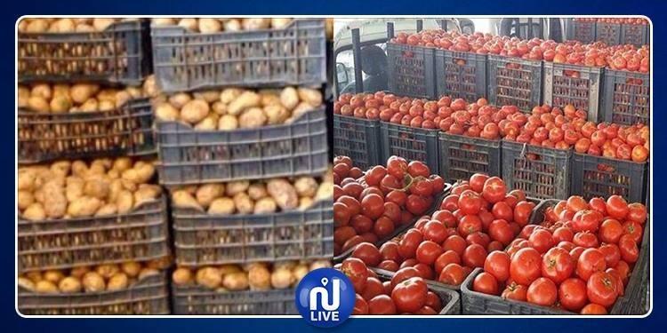 نابل: حجز أطنان من البطاطا والطماطم
