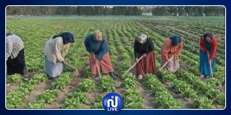 La plateforme ''Ahmini'' pour les femmes rurales, en marche