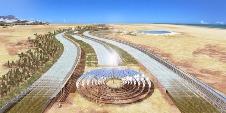 الغارديان: شركة بريطانية تعتزم تصدير  شمس تونس نحو أوروبا