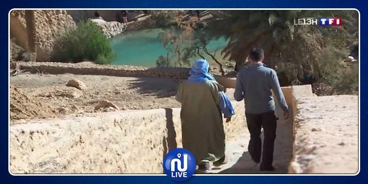 La Tunisie autrement… une oasis aux portes du Sahara...(photo)