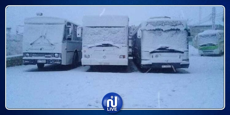 سليانة: إزاحة 20 سيارة علقت بالطريق وسمك الثلوج يبلغ 10 صم
