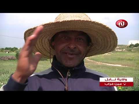 خليل تونس ليوم الثلاثاء 2 أفريل 2019
