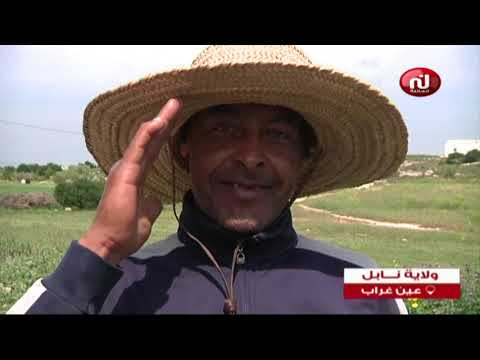 Khalil tounes du Dimanche 07 Avril   2019 - Nessma tv